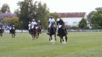 Polo News 23 (English)