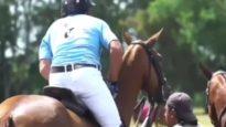 Polo News 25 (English)