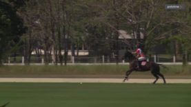 B. Grimm Thai Polo Masters – Thai Polo vs The Next Level