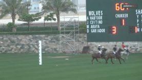 Dubai Challenge Cup – Wolves v Shansal