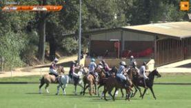 International Polo Cup (15) – VT Wealth Management v Amanara