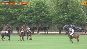 International Polo Cup (15) – VT Wealth Management v Antelope