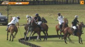 Technopolo Cup Final – Campanulata v BN Polo Team