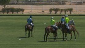 HH President of UAE Polo Cup – Abu Dhabi v Desert Palm
