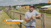 Tete Storni – Polo Rider Cup